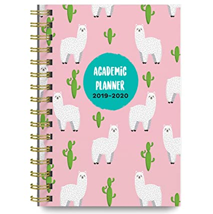 Bright Day Calendars Planners 2019-2020 Academic Year Day Planner Calendar Book - Weekly/Monthly Dated Agenda Organizer - (June 2019 - July 2020) - ...