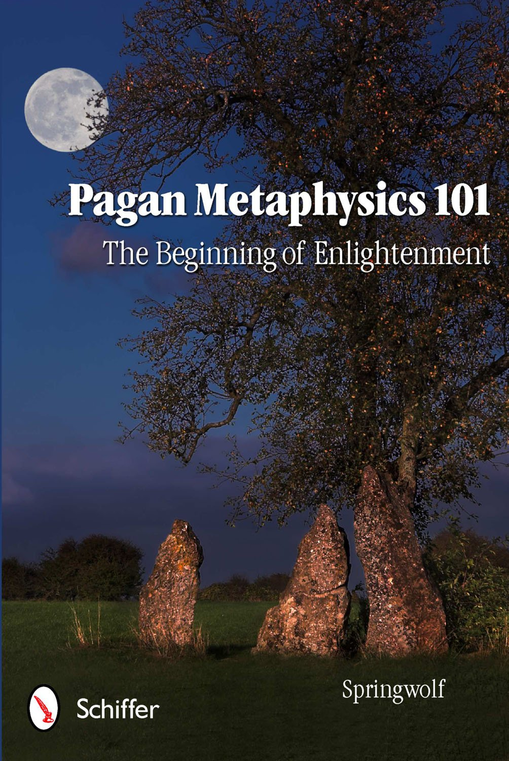 Download Pagan Metaphysics 101: The Beginning of Enlightenment pdf epub