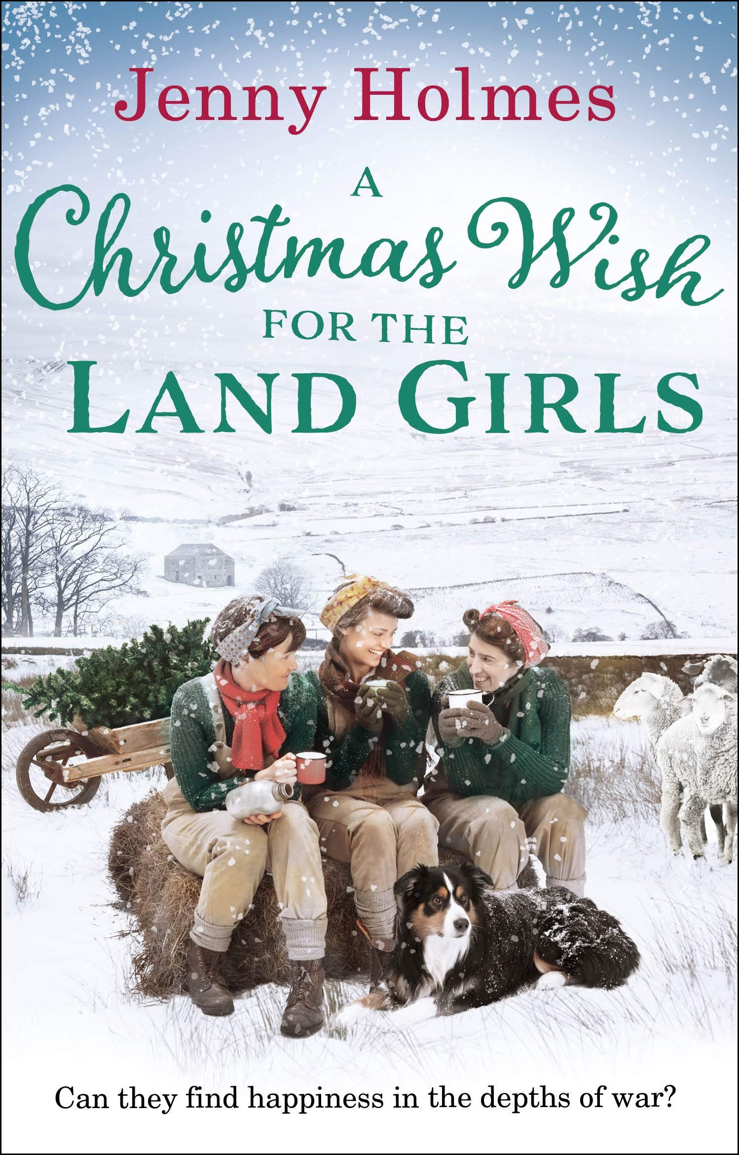 Image result for A christmas wish for the land girls holmes