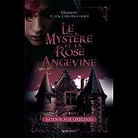 Retour aux origines: Une saga d'intrigue historique (Mystère de la Rose Angevine) (French Edition)