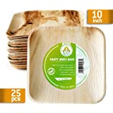 Compostable Plates 9.5 inch square 25pcs Palm Leaf Plates-our Biodegradable Plates Are Top Quality, We Use Eco Friendly Products For Party Plates-alternative to Bamboo Plates -made By KIKI Green