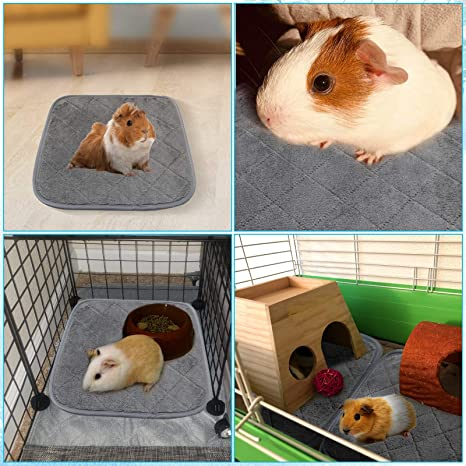 Rat Hedgehog Guinea Pig Angry Birds Cage Liner or Set With Drip and Pee Pads! Small pet