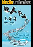 上帝鸟(2013年美国国家图书奖桂冠图书!我们都曾被命运左右,但从不曾失去自由。)
