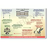 American Government: System of Checks and Balances - Classroom Civics Poster