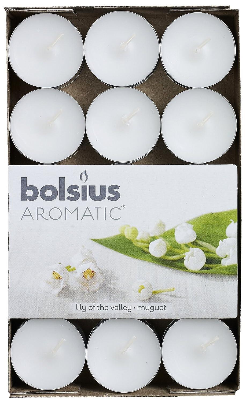 30er Pack Maigl/öckchen Bolsius Duft Teelichte