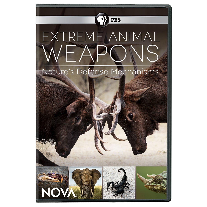 DVD : NOVA: Extreme Animal Weapons (DVD)