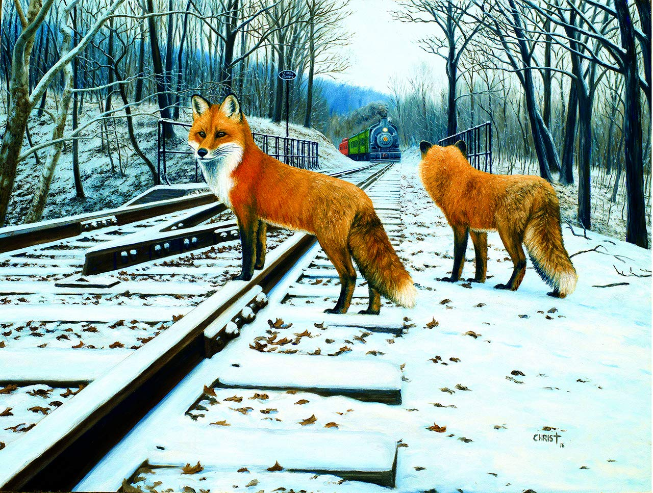 SunsOut Fox Tracks