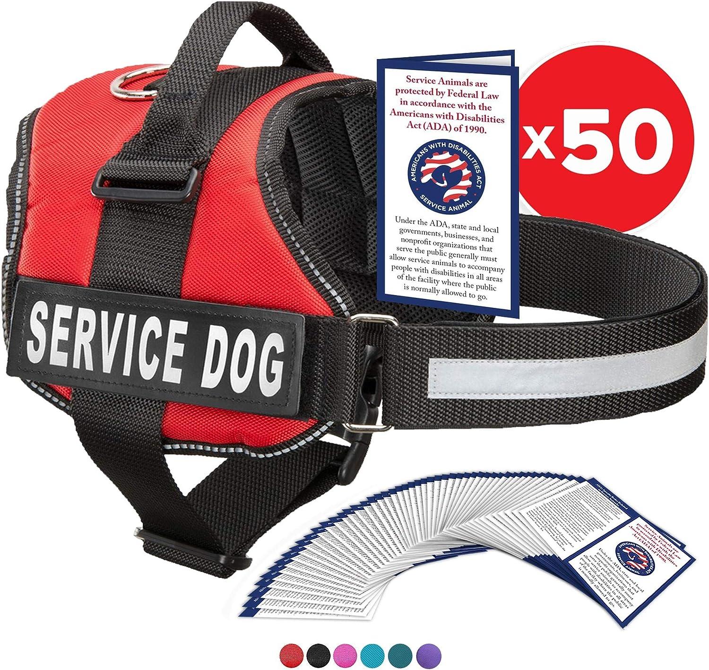 8 best dog comfort vest 2