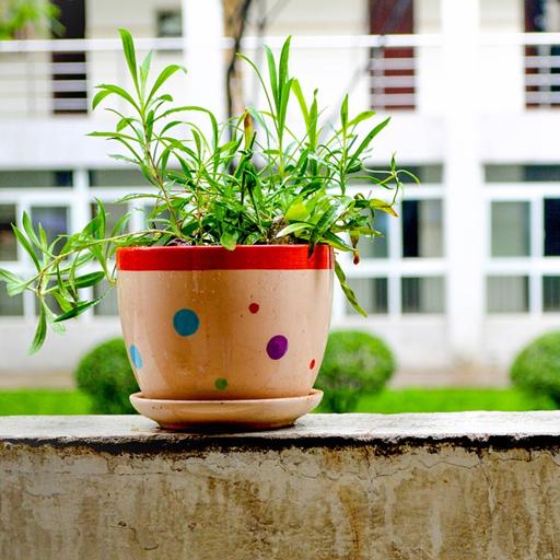 houseplants-decor-mobile