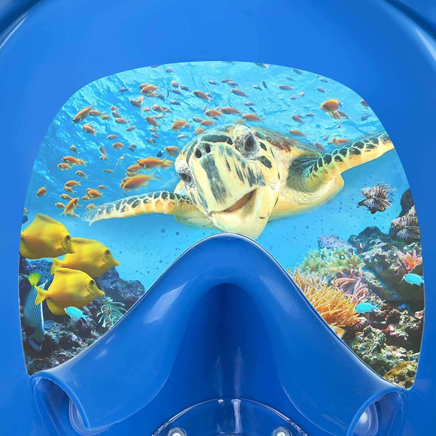 Jasonwell Panoramic Full Face Snorkel Mask with 180/°View Silicone Facial Lining Anti-Fog /& Anti-Leak for Kids Adults.