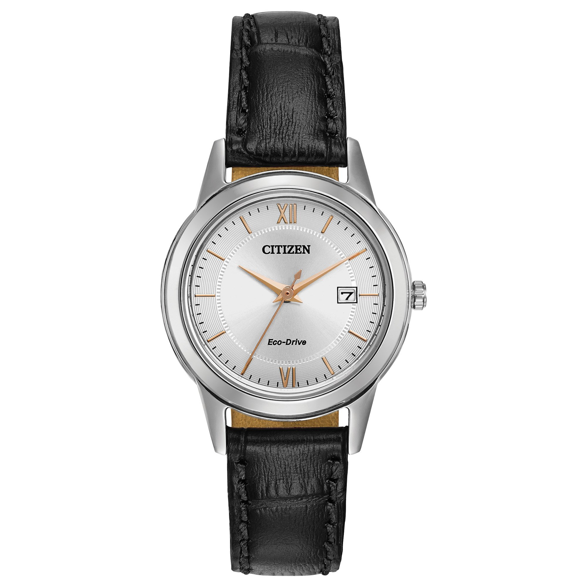 Citizen Women's Eco-Drive Stainless Steel Watch with Date, FE1086-04A