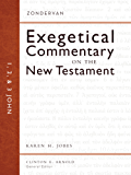 1, 2, and 3 John (Zondervan Exegetical Commentary on The New Testament series)