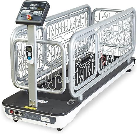 PANCHOS GYM Cinta DE Correr para Perros - Treadmill FOR Dogs ...