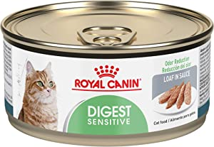 Royal Canin Feline Care Nutrition Digest Sensitive Loaf in Sauce Canned Cat Food