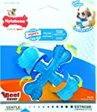 "Nylabone Puppy ""X"" Bone Small Beef Flavored Chew Toy"