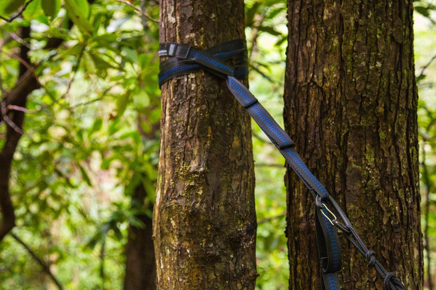 amazon     top rated iskys atlas slap straps suspension system  designed for eno eagle nest outfitters hammocks also works for most of the hammocks on the     amazon     top rated iskys atlas slap straps suspension system      rh   amazon