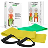 Healthy Seniors Strength Chair Exercise Program with two resistance bands, handles and printed exercise guide. Ideal for rehab or physical therapy. Perfect gift for seniors.