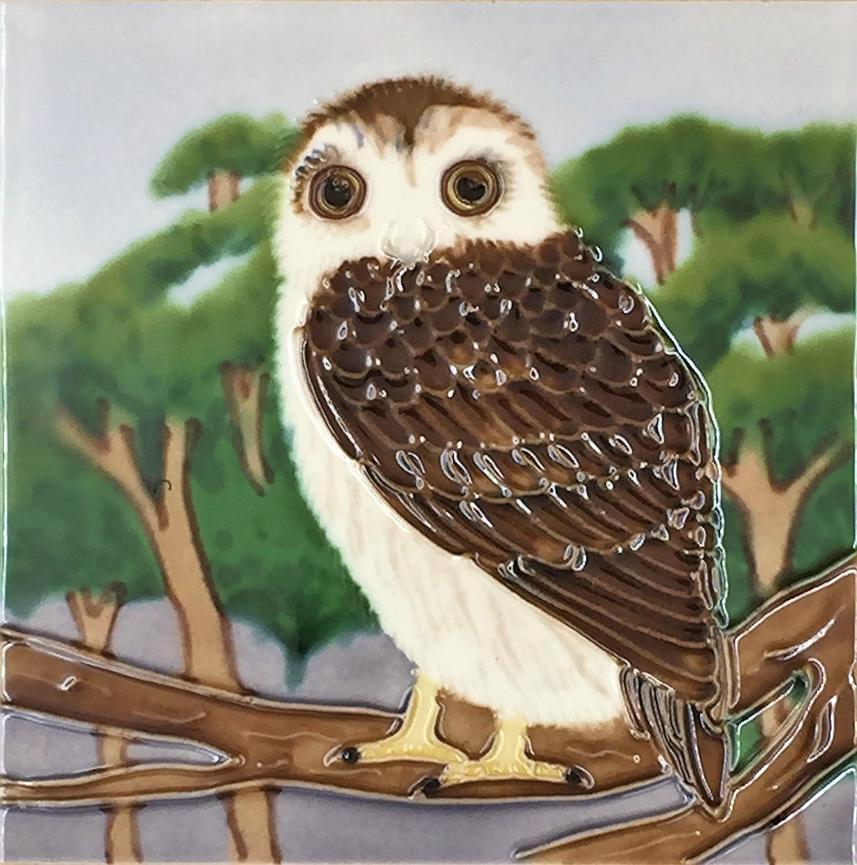 YH-Arts 6x6 OWL B, Multicolour, 15x15x0.7 cm 6x6-475