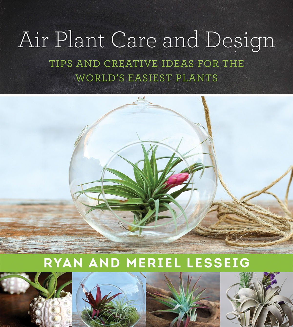 Air Plant Care And Design Tips And Creative Ideas For The World S Easiest Plants Lesseig Ryan Lesseig Meriel 9781680991543 Amazon Com Books
