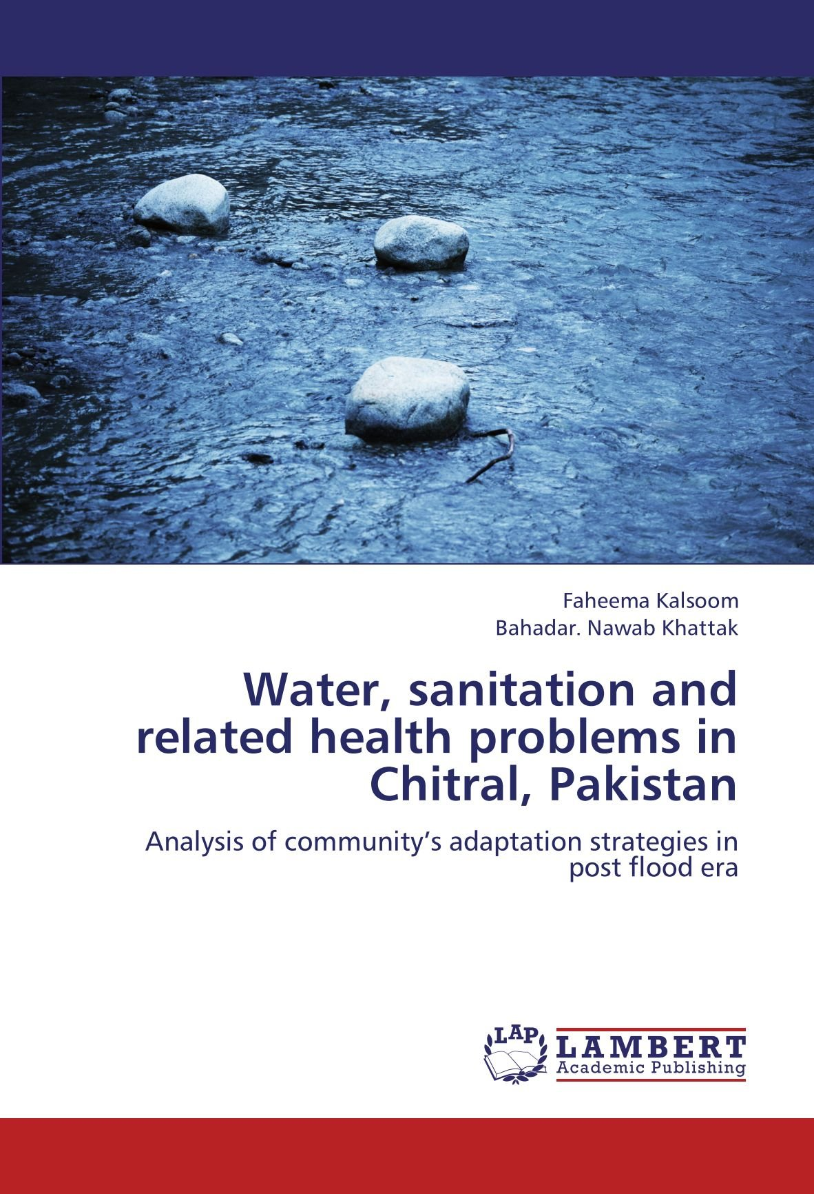 Download Water, sanitation and related health problems in Chitral, Pakistan: Analysis of community's adaptation strategies in post flood era ebook
