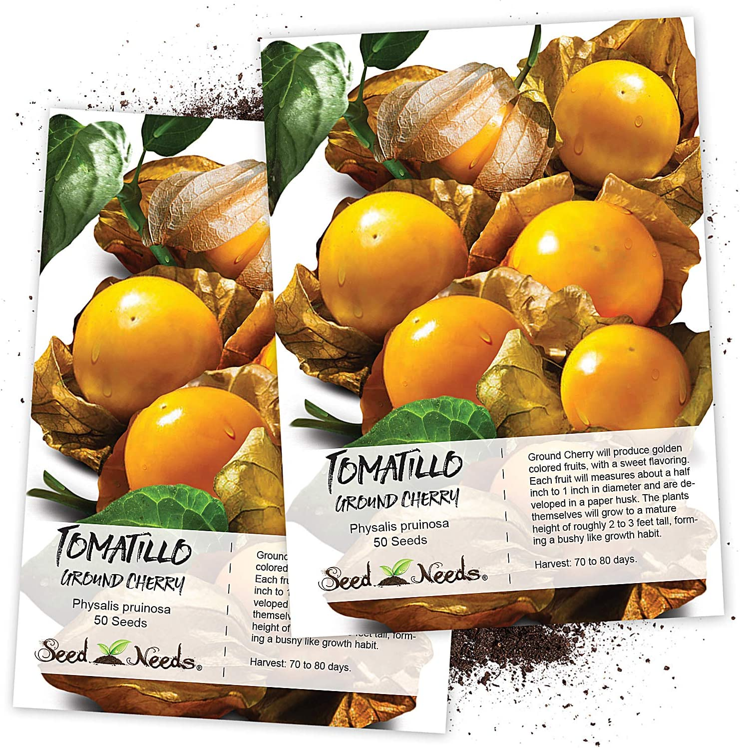 Seed Needs, Ground Cherry Tomatillo (Physalis pruinosa) Twin Pack of 50 Seeds Each Non-GMO