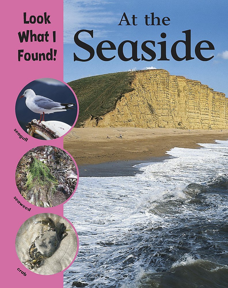 At The Seaside (Look What I Found!): Amazon.co.uk: Humphrey, Paul:  9780749689148: Books