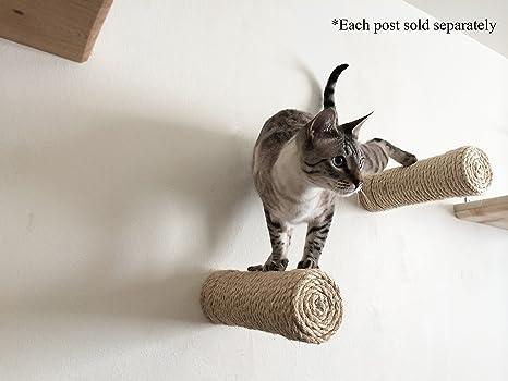 CatastrophiCreations One - Estante para gatos hecho a mano: Amazon ...