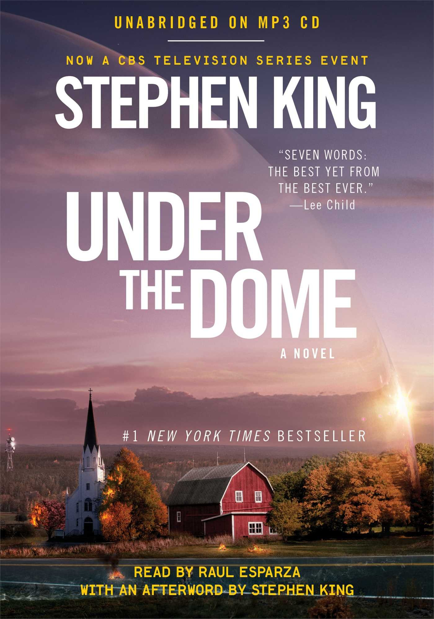Image result for under the dome book