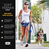 EzyDog Soft Trainer Dog Leash with Traffic
