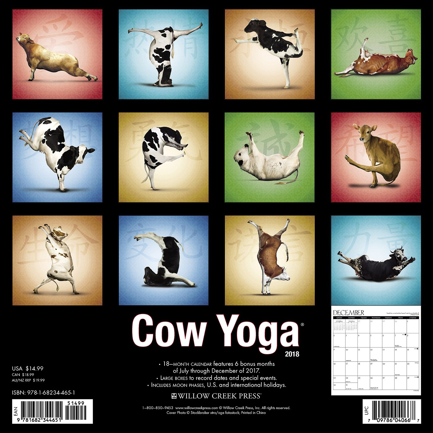 Cow Yoga 2018 Calendar: Willow Creek Press: 0709786040667 ...