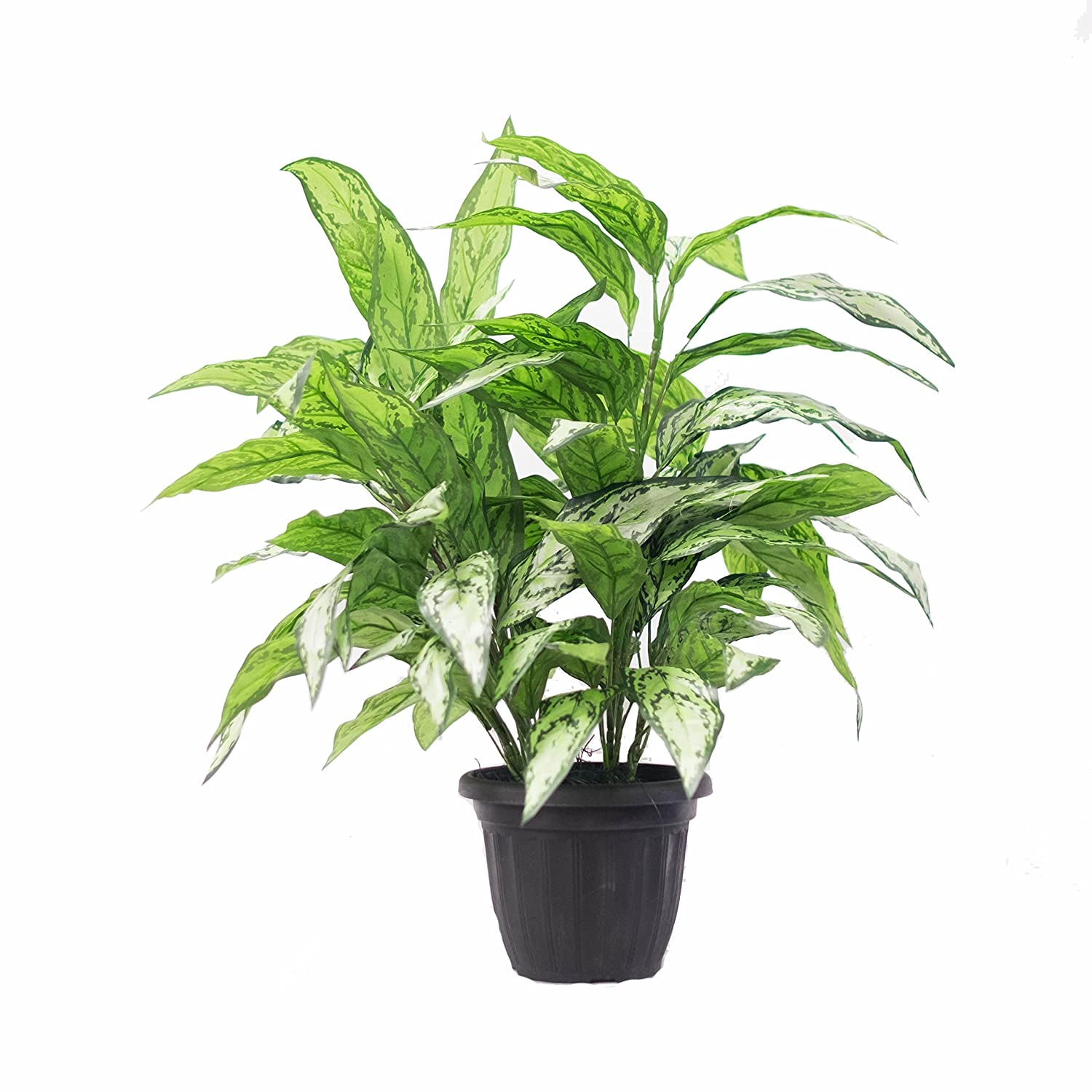 Silk Plant Decor and More Artificial Silver Queen Plant (Deluxe Double)