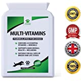 Daily Multivitamin Supplement for Dogs - 120 Chewable Chicken Flavour Tablets - Contains 24 Nutrients, Vitamins & Minerals - Helps with Skin, Brain, Heart, Eyes, Kidneys, Liver and Joint Function - Furever Friendz