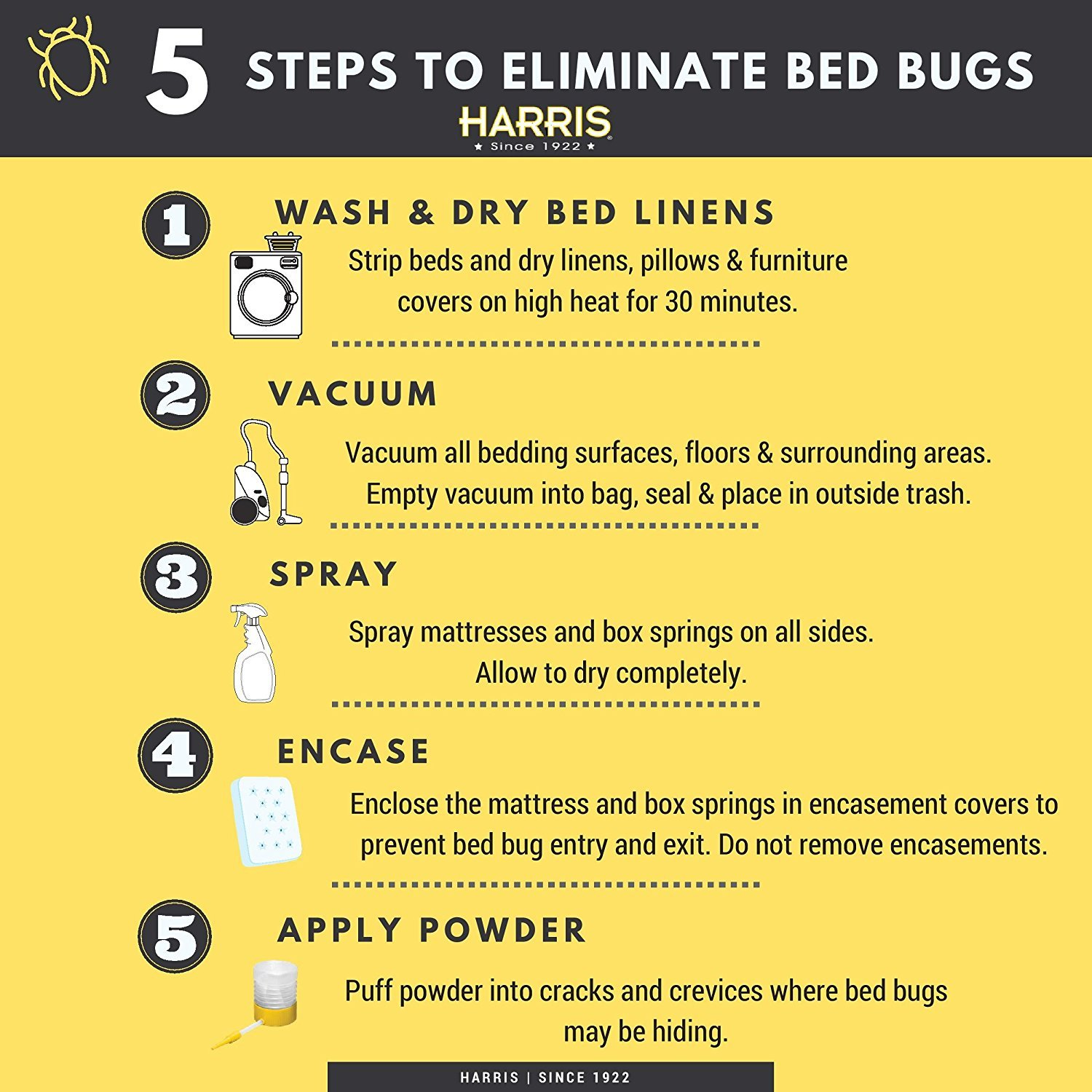 bugs rid bug to at of how home getting bed get
