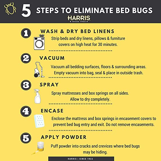 amazoncom harris premium bed bug mattress encasement protector cover queen home u0026 kitchen