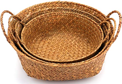 Yesland 3 Pack Woven Seagrass Belly Basket with Handles, Ideal Plant Pot Storage Basket for Laundry, Picnic, Plant Pot Cover, Beach Bag and Grocery Basket S,M,L