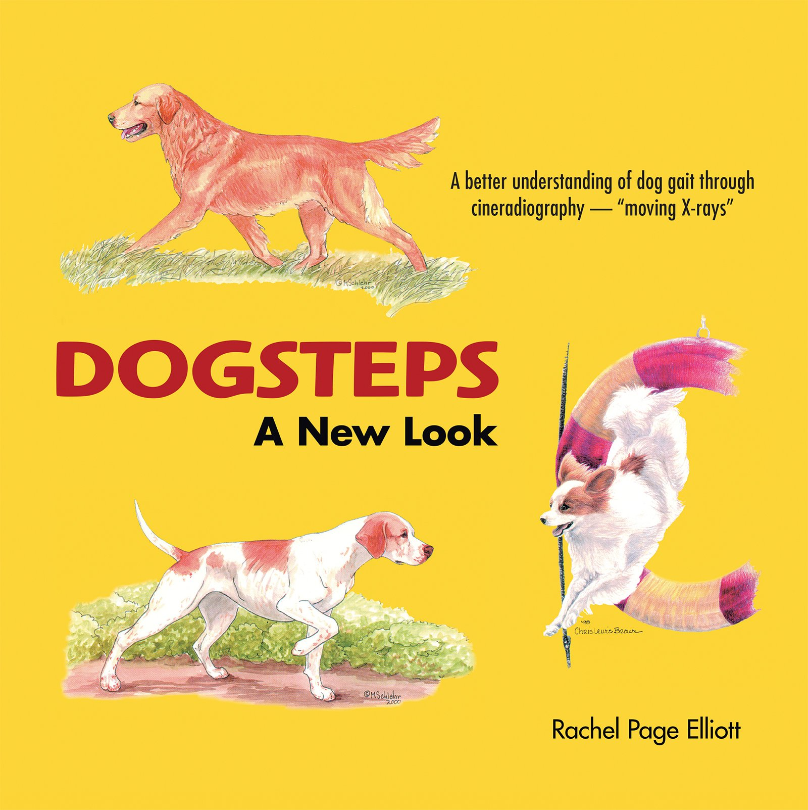 Download Dogsteps A New Look pdf