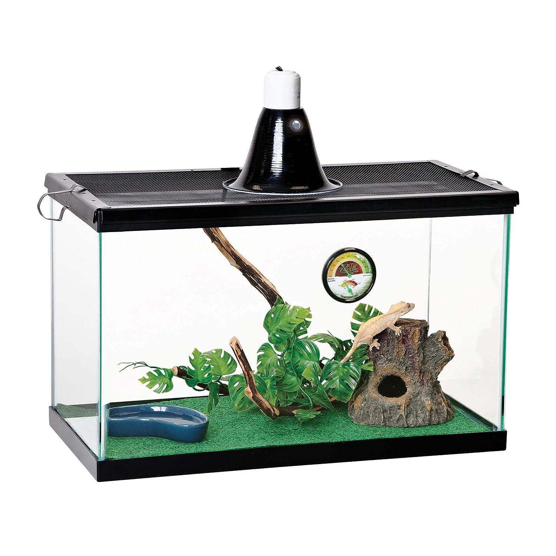 垂直Tropical Terrarium Kit B00W5TFBZI