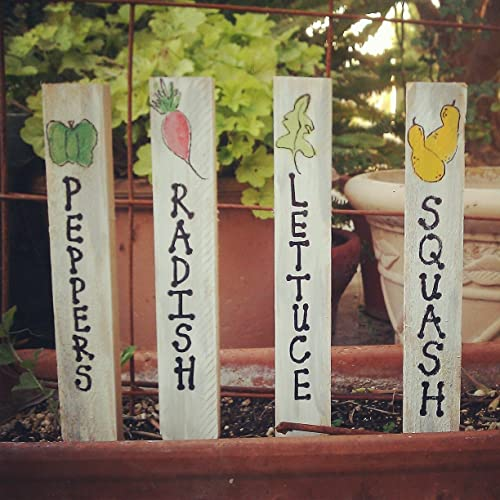 Amazoncom Garden Markers Vegetable Markers Garden Stakes