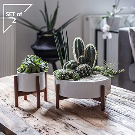 Amazon Com Set 2 Mid Century Modern Succulent Planter Large Midi