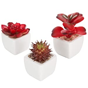 MyGift Set of 3 Miniature Red Artificial Succulent Plants in White Ceramic Pots