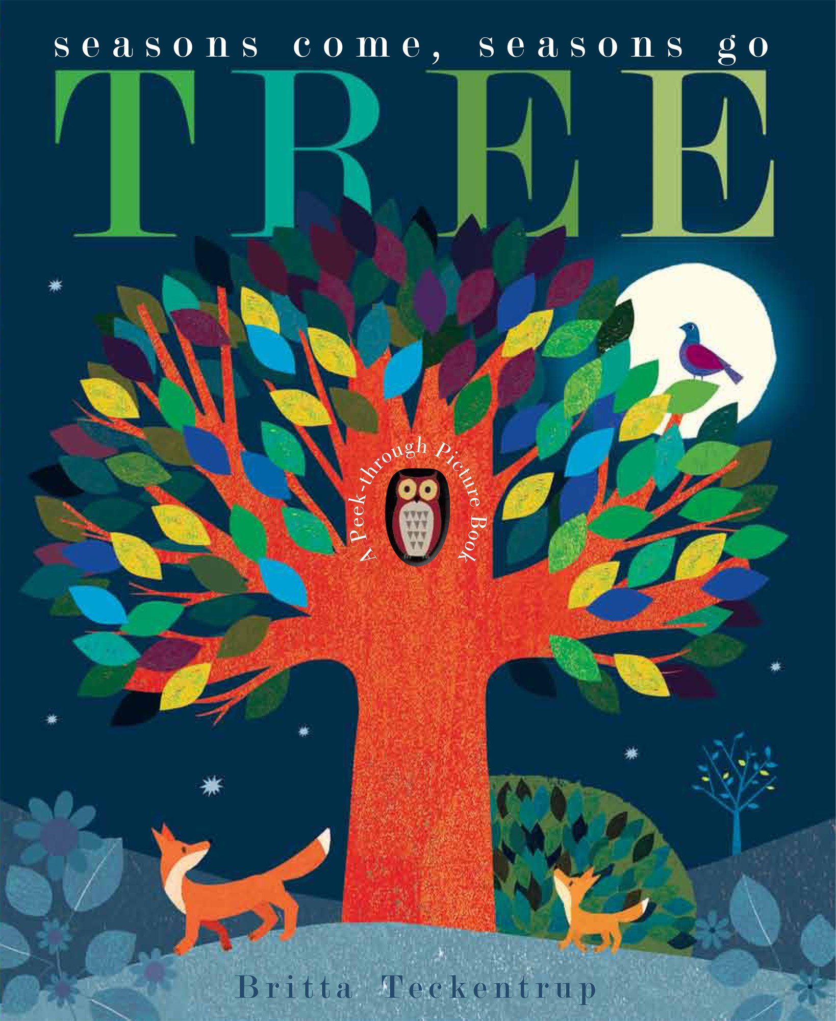 Tree: Seasons Come, Seasons Go: Amazon.co.uk: Hegarty, Patricia, Teckentrup,  Britta: Books