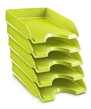 CEP Gloss - Lote de 10 bandejas compactas, color anís: Amazon.es: Oficina y papelería