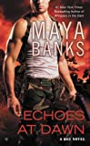 Echoes at Dawn: A KGI Novel Book 5
