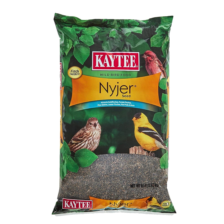 (3.6kg) Kaytee Nyjer Thistle Seed
