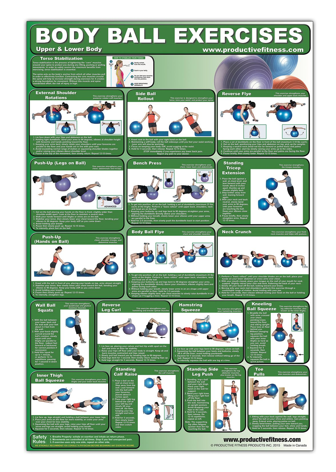 Download Laminated Fitness Ball Poster - Upper & Lower Body Exercises - Created by University Accredited Fitness Experts - Stability Ball Exercises for Legs ... - Tone and Tighten Arms, Chest and Back PDF