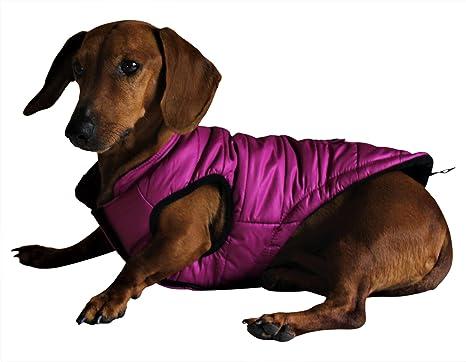 Abrigo impermeable para perros pequeños, abrigo para perros medianos, invierno cálido con forro polar