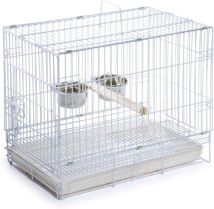 The Best Petco Bird Cages