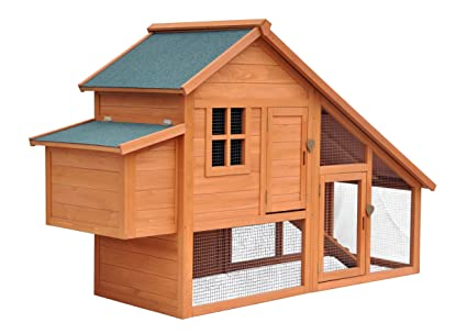 Amazon.com: Merry Productos hábitat Chicken Coop, Multicolor ...
