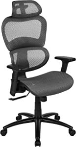 Flash Furniture Ergonomic Mesh Office Chair with 2-to-1 Synchro-Tilt, Adjustable Headrest, Lumbar Support, and Adjustable Pivot Arms in Gray