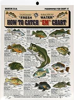 Amazon bass walleye panfish ident i card freshwater fishermans freshwater fish chart 3 sciox Choice Image